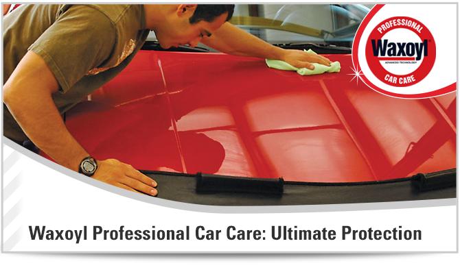 Car Care Figure